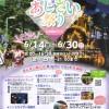 2019あじさい祭りin太閤山ランド 箏コンサート